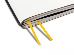 A4+ Doppelbuchband mango