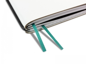 Doppelbuchband aqua grün