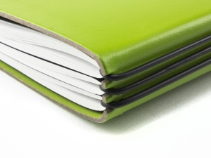 A7 Lefa Hülle 2er grün, inkl. ElastiXs